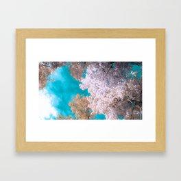 Infrared Autumn Framed Art Print