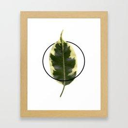 Nature. Minimalism. Photo. Society6. Minimalist. Hybrydus. II Framed Art Print