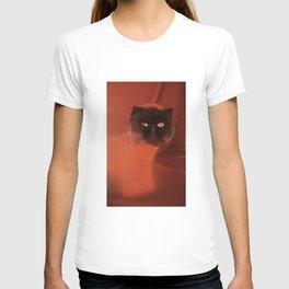 Muad'Dib Cat Portrait in Red T-shirt
