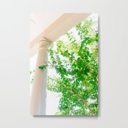 Charleston Architecture XXXIX Metal Print