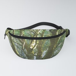 Moss Covered Branches Fanny Pack