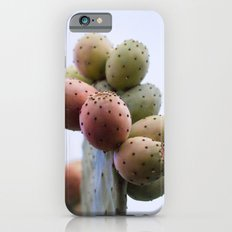 Prickly Pear Fruits iPhone 6s Slim Case