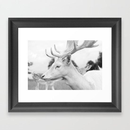 The Last King Framed Art Print