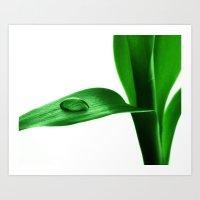 bamboo Art Prints featuring bamboo by Falko Follert Art-FF77