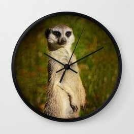 I am a model - a meerkat Wall Clock