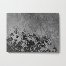 Branches in the Sky-Gray Metal Print