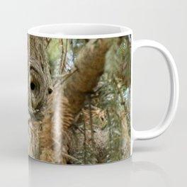 Beautiful Barred Owl Coffee Mug
