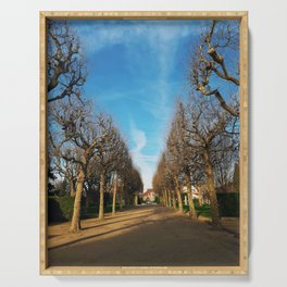 Bare trees alley Serving Tray