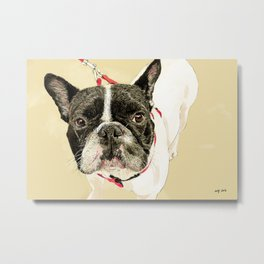 French Bulldog II Metal Print
