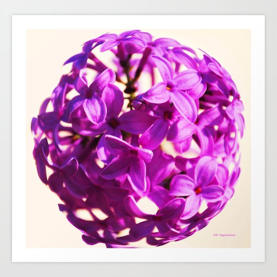 Lilac Ball two Art Print