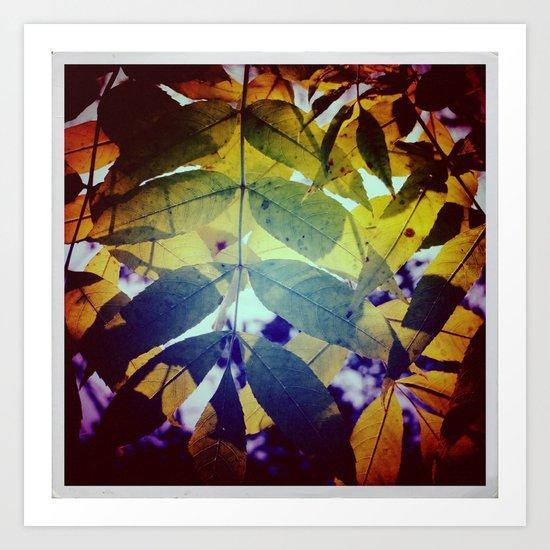 Autumnal#2 Art Print