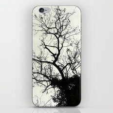 teasing branches (hard shell) iPhone & iPod Skin