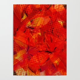 Early Morning Orange Lilies Poster