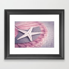 MARITIME STILL LIFE with sea shell and starfish Framed Art Print