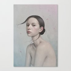 380 Canvas Print