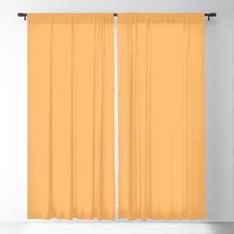 WARM APRICOT pastel solid color  Blackout Curtain