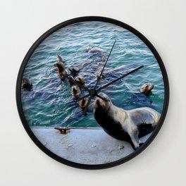 Sea Lions Wall Clock