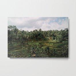 Bali Tegalalang II Metal Print