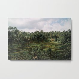 Bali Tegalalang II , Indonesia Metal Print