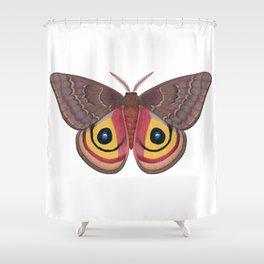 io moth (Automeris io) female specimen 1 Shower Curtain