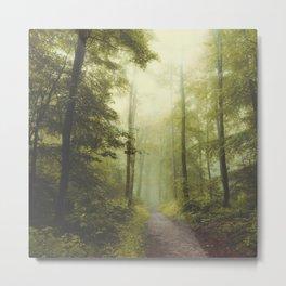 Long Forest Walk Metal Print