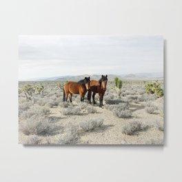 Desert Horse Pair Metal Print