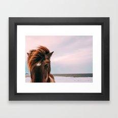 Horse #sunset Framed Art Print