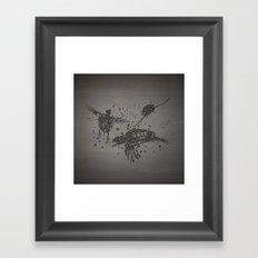 Dead Sea, Turtles Framed Art Print
