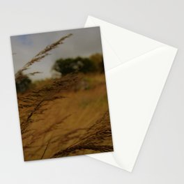 Amber Waves Stationery Cards