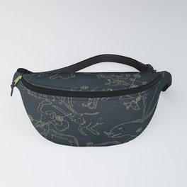 Winter Constellations Fanny Pack