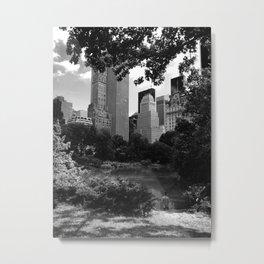 Central Metal Print