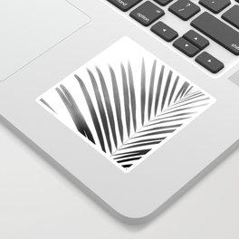 Palm Leaf   Black and White Sticker