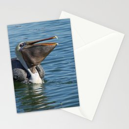 Pelican Lunchtime Stationery Cards