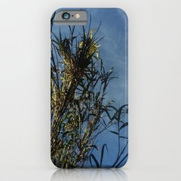 Nature and greenery 13 with reed iPhone Case