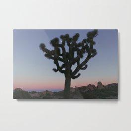 DESERT DAYDREAMS Metal Print