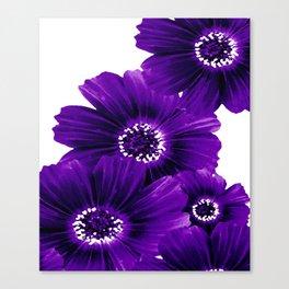Floral Violet Canvas Print