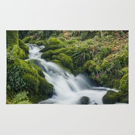 Forest Treasures  Rug