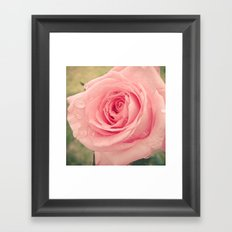 Dewy Rose Framed Art Print