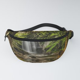 Picture USA Pisgah National Forest Nature Waterfalls Forests Trunk tree Trees forest Fanny Pack