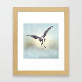 Sandhill Crane painting.Digital art. Framed Art Print