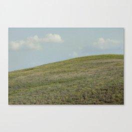 Summer Meadow XI Canvas Print