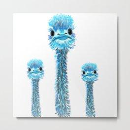 Curious Emu Metal Print
