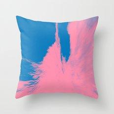427 Throw Pillow