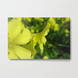 Symphony In Yellow Metal Print