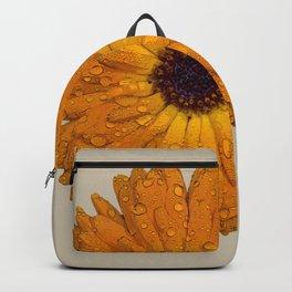 Calendula officinalis Backpack