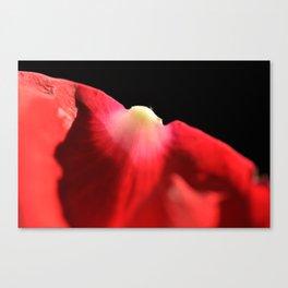 Petal Canvas Print