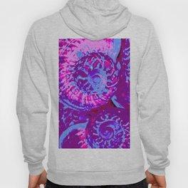 Lavender Seashells Hoody