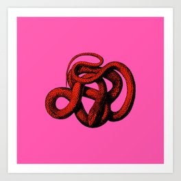 Snek 3 Snake Orange Pink Art Print