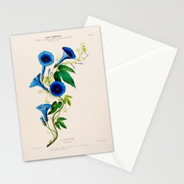"""Celestine (blue bindweed) from """"Flore d'Amérique"""" by Étienne Denisse, 1840s Stationery Cards"""