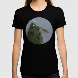 Launch Pad T-shirt